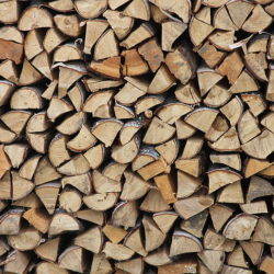 firewood-background-wood-tree-preview