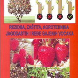 Slika, rezidba, zaštita, agrotehnik jagodastih i ređe gajenih voćaka, 2